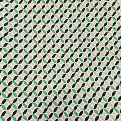Coupon cercles mint