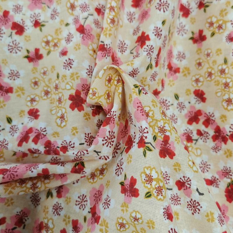Sakura ivoire 2